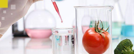 Mesa con objetos de laboratorio y verduras