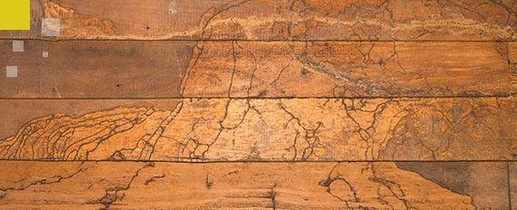 Interplaga - Tratamientos en la madera