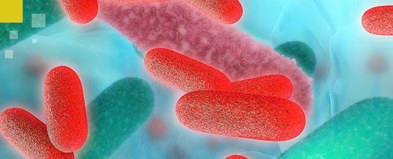 Interplaga - Tratamiento contra Legionella