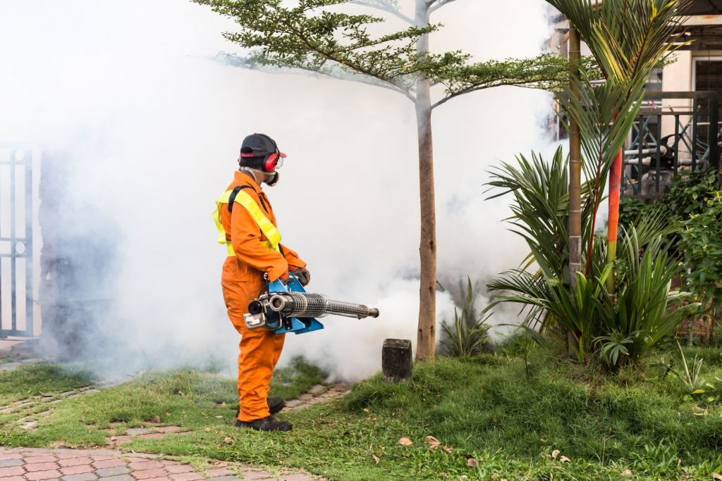 Persona equipada fumigando árboles
