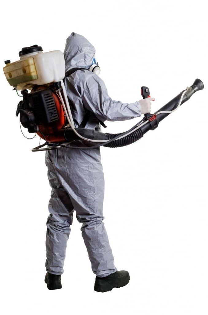 Tratamientos para eliminar cucarachas